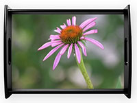 coneflower-serving-tray
